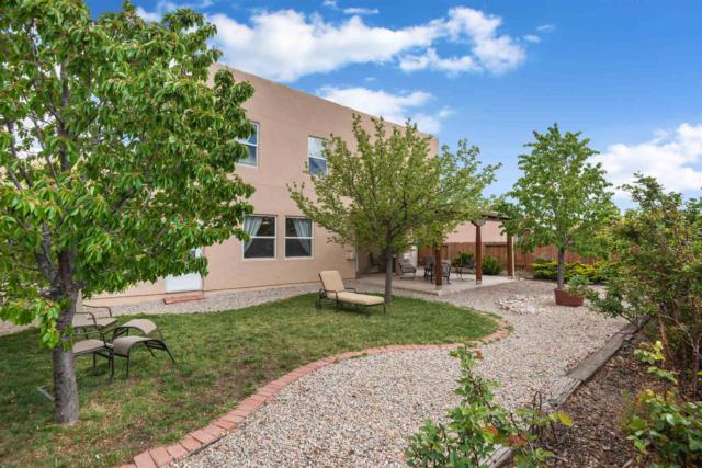 4565 Mesa Del Oro Loop, Santa Fe, NM 87507 (MLS #201901818) :: The Very Best of Santa Fe