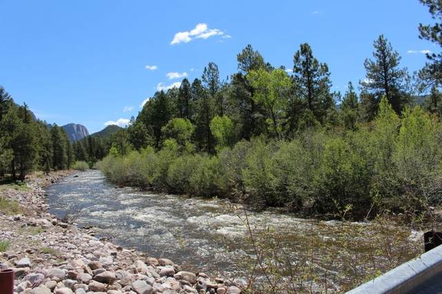 Brazos Partnership Tract, Chama, NM 87520 (MLS #201901964) :: The Very Best of Santa Fe