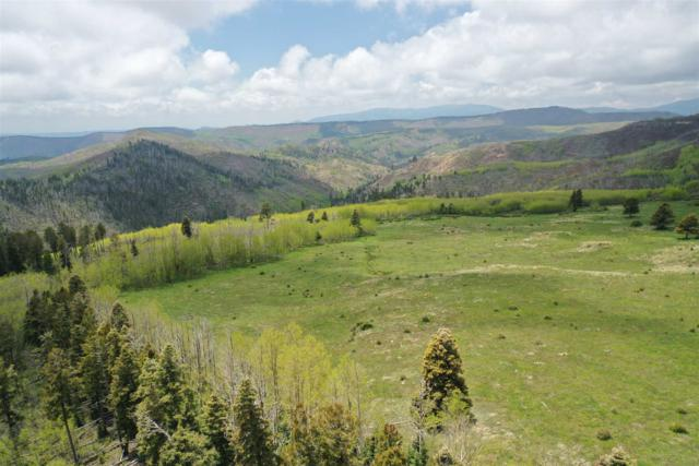 Forest Road 92 Lots A, B, C & , Pecos, NM 87552 (MLS #201902105) :: The Very Best of Santa Fe