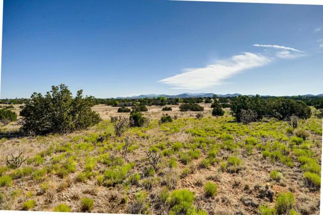 12 Estambre Ct, Santa Fe, NM 87508 (MLS #201902459) :: The Desmond Group