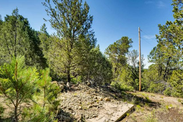 208 La Cueva Rd Lots D & E, Glorieta, NM 87535 (MLS #201903530) :: Summit Group Real Estate Professionals