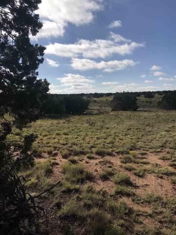 18 Alyssa, Lamy, NM 87540 (MLS #201904347) :: The Very Best of Santa Fe