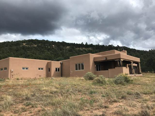 389 Glorieta Mesa, Glorieta, NM 87535 (MLS #201905153) :: The Desmond Hamilton Group