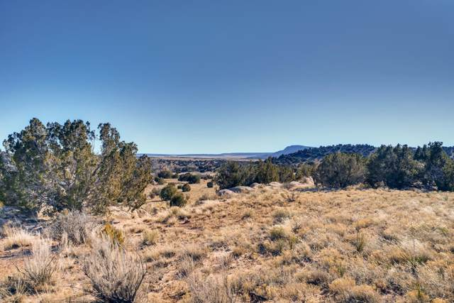 Tract 7 Camino Los Abuelos Cr 42, Galisteo, NM 87540 (MLS #202000019) :: The Very Best of Santa Fe