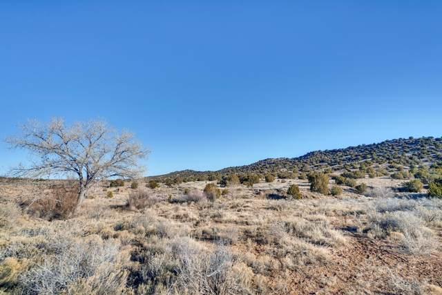 Tract 6 Camino Los Abuelos Cr 42, Galisteo, NM 87540 (MLS #202000020) :: The Very Best of Santa Fe