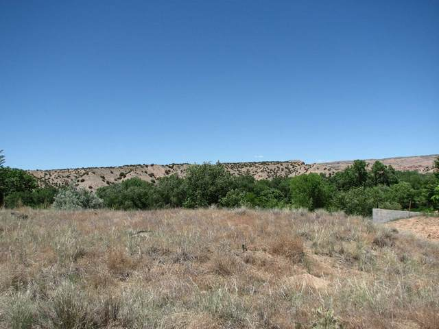 29 Camino De Casimiro, La Puebla, NM 87532 (MLS #202000063) :: The Desmond Hamilton Group