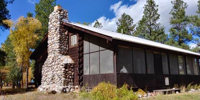 29 Pd 1751, Millstone Acres, Chama, NM 87520 (MLS #202000080) :: The Desmond Group