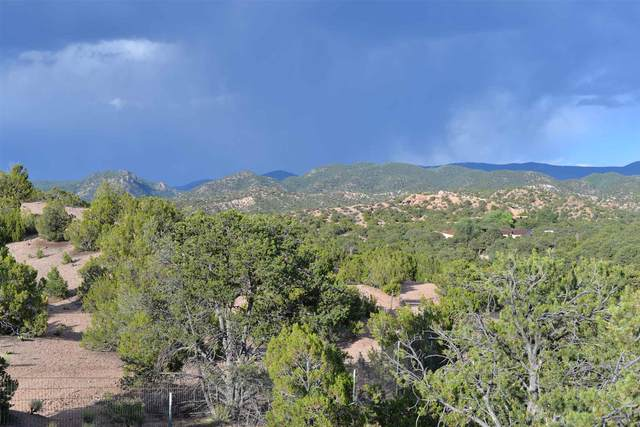 20 Cerro De Palomas, Santa Fe, NM 87506 (MLS #202000588) :: Neil Lyon Group | Sotheby's International Realty
