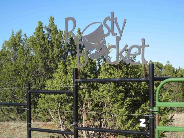 700 Apache Mesa Road, Los Montoyas, NM 87701 (MLS #202000716) :: The Desmond Hamilton Group
