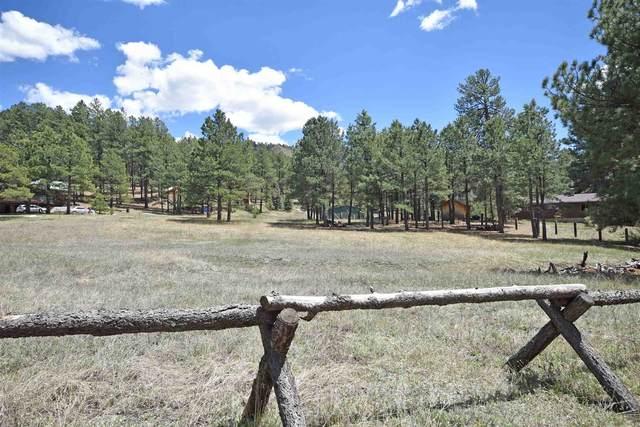 0 Elk Trail, Jemez Springs, NM 87025 (MLS #202000717) :: Stephanie Hamilton Real Estate