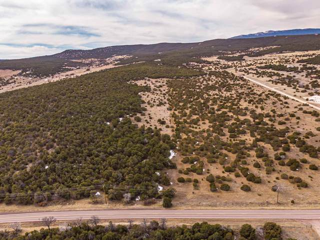 685 Nm 217, Tijeras, NM 87015 (MLS #202000758) :: The Desmond Hamilton Group