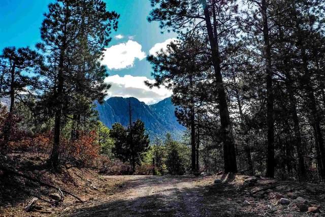 KP-4 Cottontail Road, Enchant-A-Rama Sub. Enchant-A-Rama , Chama, NM 87520 (MLS #202000815) :: The Very Best of Santa Fe