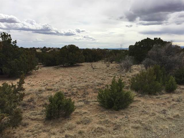 9 Jornada Loop, Santa Fe, NM 87508 (MLS #202000945) :: The Desmond Hamilton Group