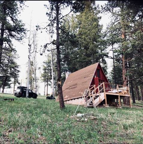 7 Iron Trail, Pecos, NM 87552 (MLS #202001100) :: Berkshire Hathaway HomeServices Santa Fe Real Estate