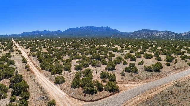 8 Stoney Road, Cerrillos, NM 87010 (MLS #202001173) :: The Desmond Hamilton Group