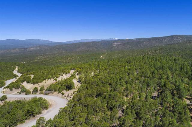 47 Silver Feather Trail Lot 6, Pecos, NM 87552 (MLS #202001205) :: Berkshire Hathaway HomeServices Santa Fe Real Estate
