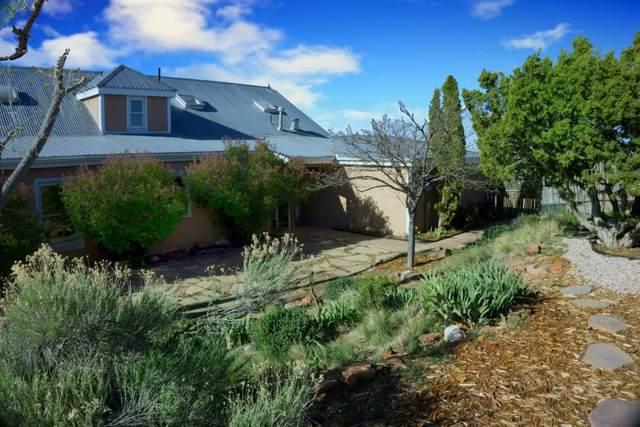 10 Prairie Vista Place, Santa Fe, NM 87508 (MLS #202001398) :: The Desmond Hamilton Group