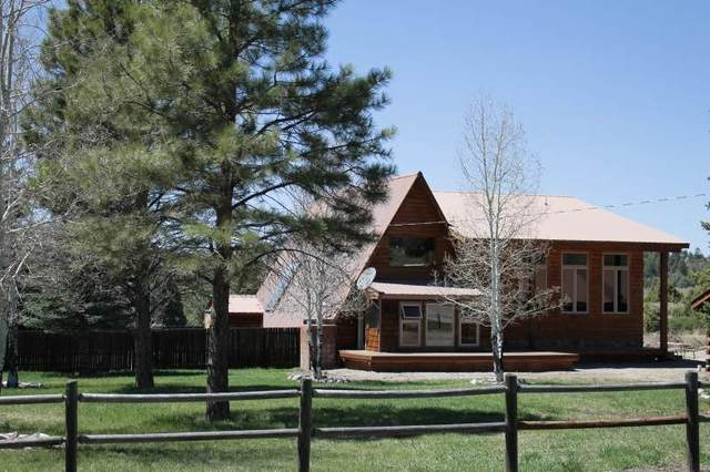 11 & 11A Private Drive 1789, Chama, NM 87520 (MLS #202001415) :: The Very Best of Santa Fe