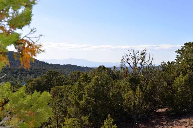 1686 Wilderness Gate Rd, Santa Fe, NM 87505 (MLS #202001455) :: The Desmond Hamilton Group