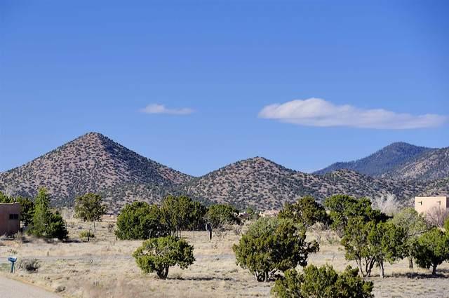 73 Condesa Rd, Santa Fe, NM 87508 (MLS #202001493) :: The Desmond Hamilton Group