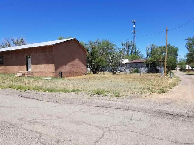 170 Simpson Ave, Corona, NM 88318 (MLS #202001737) :: The Very Best of Santa Fe