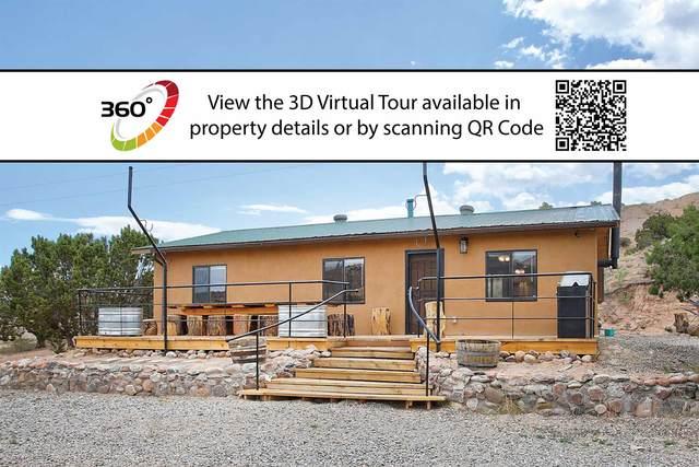 198 State Road 554, Abiquiu, NM 87510 (MLS #202002320) :: The Very Best of Santa Fe