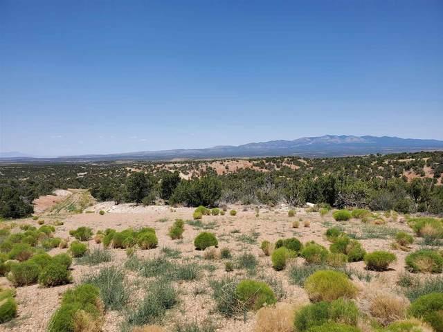 68 Tenabo Trail, Mountainair, NM 87036 (MLS #202002459) :: The Very Best of Santa Fe