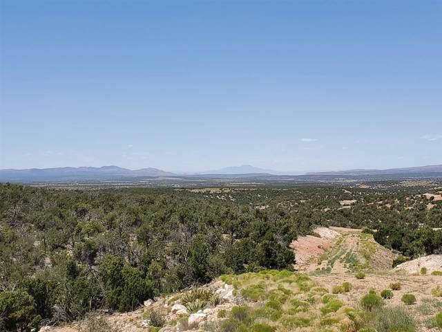 1580 Deer Canyon Trail, Mountainair, NM 87036 (MLS #202002462) :: The Very Best of Santa Fe