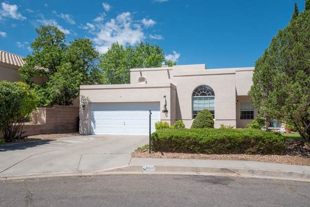 8909 Henriette Wyeth Dr. Ne, Albuquerque, NM 87122 (MLS #202002518) :: The Very Best of Santa Fe