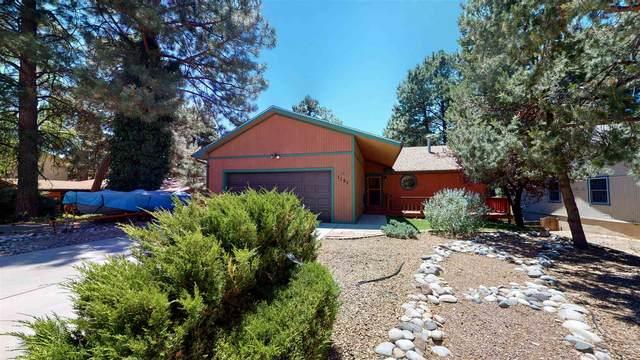 1151 Big Rock Loop, Los Alamos, NM 87544 (MLS #202002637) :: The Desmond Hamilton Group