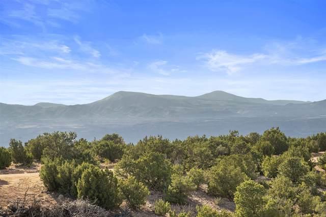 14 Heather Lane, Santa Fe, NM 87506 (MLS #202002644) :: Summit Group Real Estate Professionals