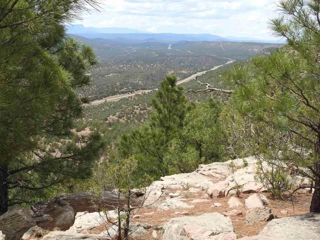 140 Apache Mesa Rd, Los Montoyas, NM 87701 (MLS #202002710) :: The Very Best of Santa Fe