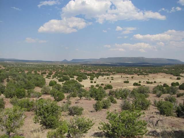Lot 3 Ranchos Del Rito, San Jose, NM 87565 (MLS #202002754) :: The Very Best of Santa Fe