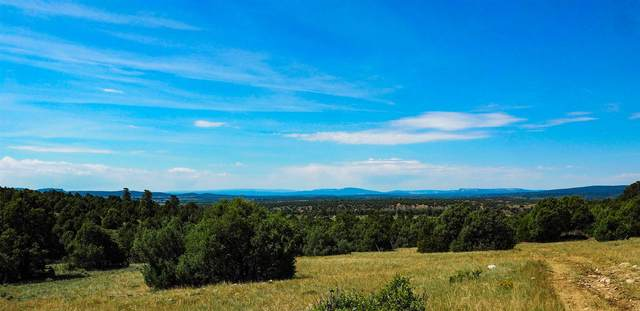 Lot 26 Unit 1 Raven St. Ponderosa Subdivision Ponderosa Subdi, Chama, NM 87520 (MLS #202002835) :: The Very Best of Santa Fe