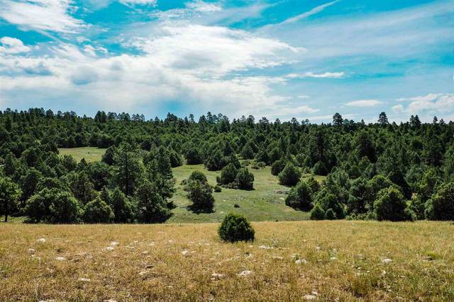 Lot 27 Unit 1 - Raven Rd - Ponderosa Sub Ponderosa, Chama, NM 87520 (MLS #202002842) :: Summit Group Real Estate Professionals