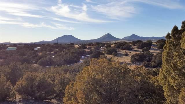 3821 Cactus Place, Santa Fe, NM 87508 (MLS #202002845) :: Neil Lyon Group | Sotheby's International Realty