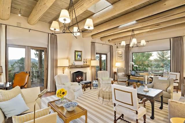 890 Paseo De Don Carlos, Santa Fe, NM 87501 (MLS #202003386) :: Summit Group Real Estate Professionals