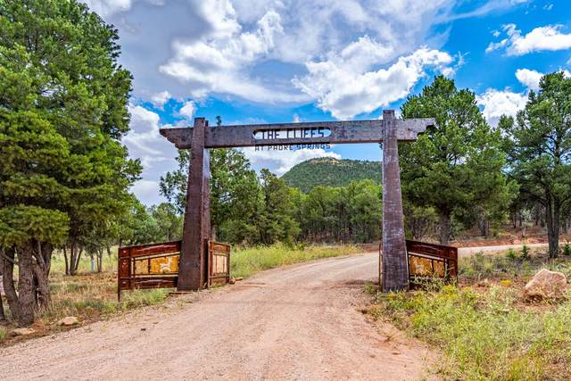 40 The Cliffs View Lot 4, Glorieta, NM 87535 (MLS #202003414) :: Summit Group Real Estate Professionals