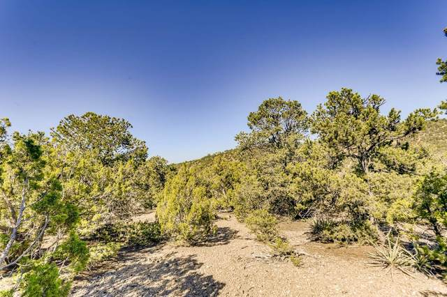 1984 Cerros Colorados, Santa Fe, NM 87501 (MLS #202003550) :: The Very Best of Santa Fe