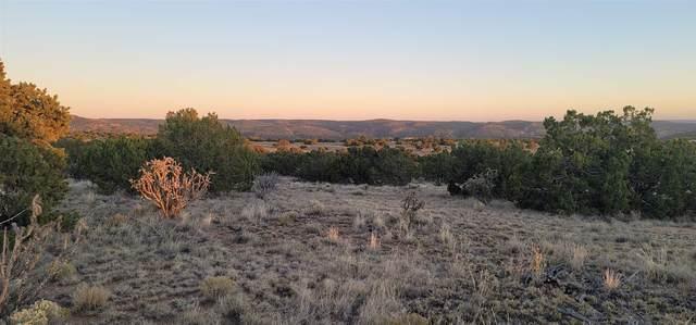 6 Acote Court, Santa Fe, NM 87508 (MLS #202003956) :: Summit Group Real Estate Professionals