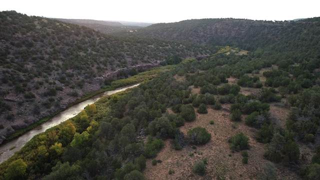 Lot 70,71,80,81 Pecos River Retreat, Ilfeld, NM 87538 (MLS #202004021) :: Summit Group Real Estate Professionals
