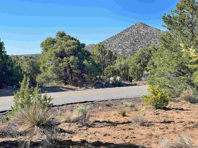 51 Nine Mile Road, Santa Fe, NM 87508 (MLS #202004072) :: Summit Group Real Estate Professionals