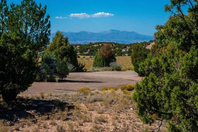 14 Plano Arbolito, Santa Fe, NM 87506 (MLS #202004264) :: Berkshire Hathaway HomeServices Santa Fe Real Estate