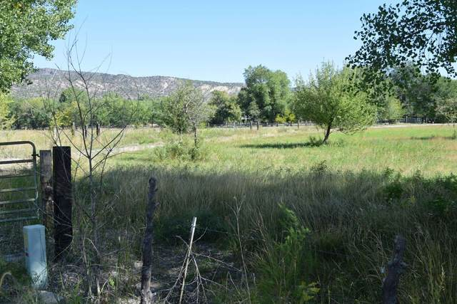 183 County Road 41, Alcalde, NM 87511 (MLS #202004351) :: Summit Group Real Estate Professionals