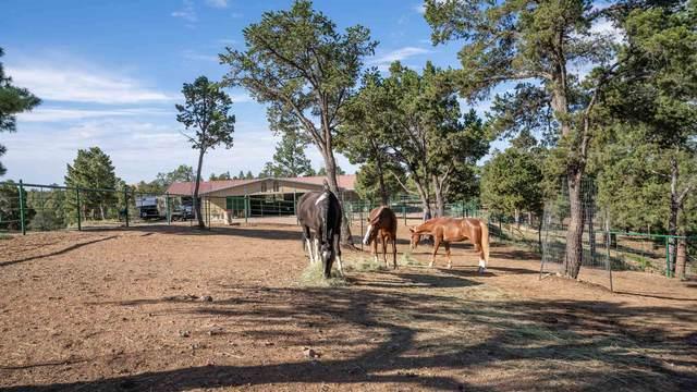 15 Lightning Ridge, Santa Fe, NM 87505 (MLS #202004470) :: Summit Group Real Estate Professionals