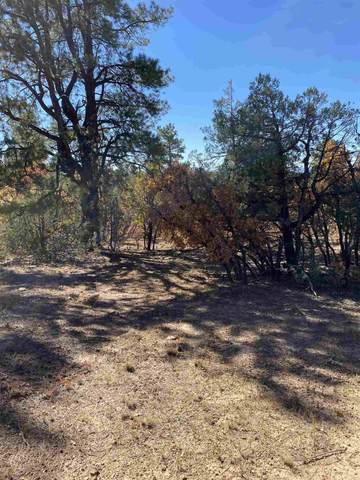 Tract 40 Unit 7, Ponderosa, Chama, NM 87520 (MLS #202004504) :: The Very Best of Santa Fe