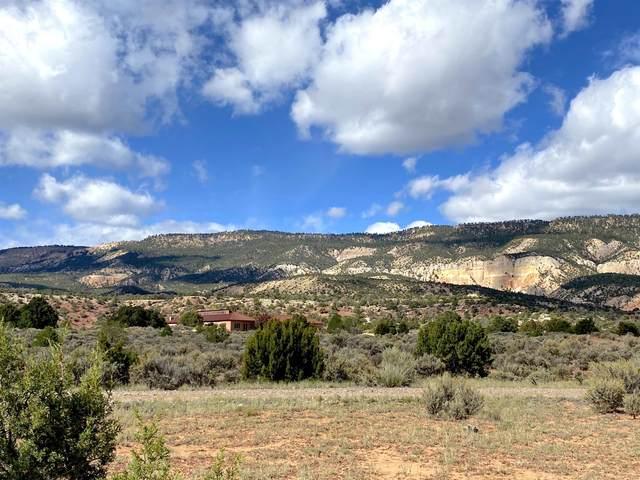 Rancho Azul 155 Mesa Prieta Road, Youngsville, NM 87064 (MLS #202004688) :: The Very Best of Santa Fe