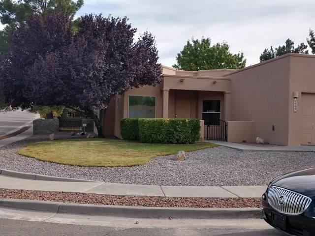 2868 Morningstar, Las Cruces, NM 88011 (MLS #202004800) :: The Very Best of Santa Fe