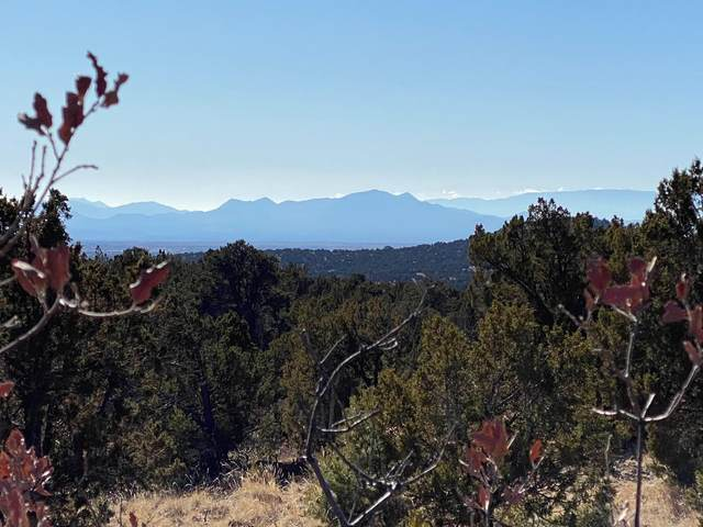 8 High Desert Vista , Lot #18, Santa Fe, NM 87505 (MLS #202005065) :: The Very Best of Santa Fe