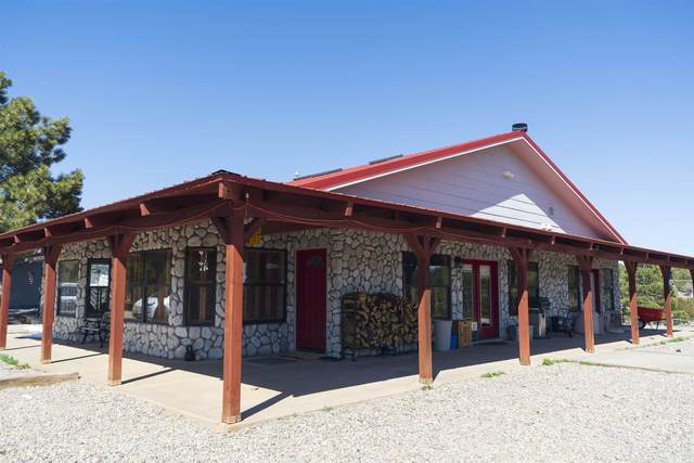 17 Raven Road, Tijeras, NM 87059 (MLS #202005217) :: Stephanie Hamilton Real Estate